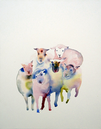 flock of sheep 01
