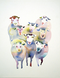 flock of sheep 02